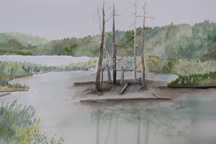 Wetlands near Bancroft Ontario