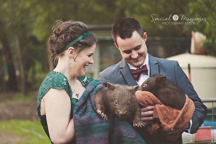 wedding with the wildlife