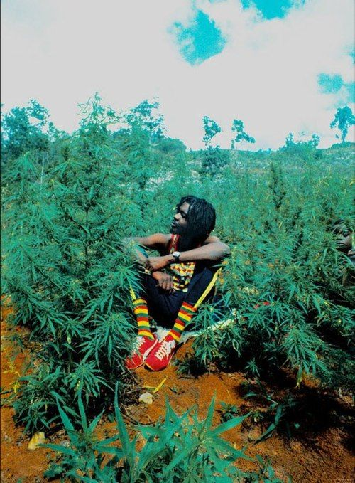 https://www.facebook.com/pages/DI-TITUS/132205826908471Peter (Peter Tosh)