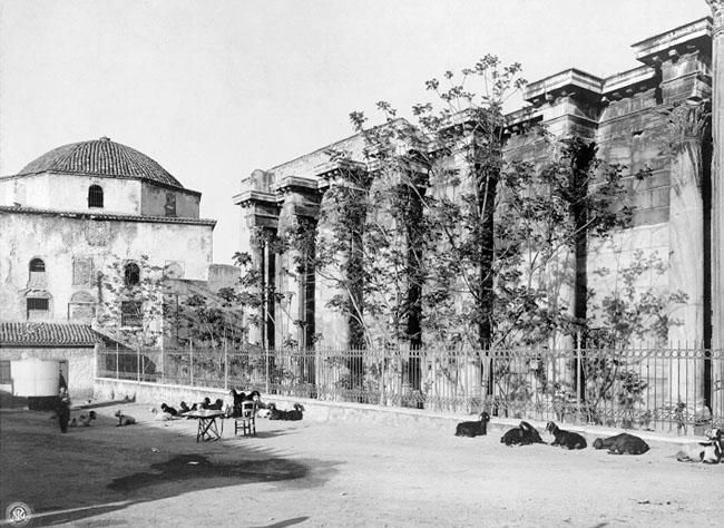 A really old photo of the Library of Hadrian in Athens for @carolemadge ... sheep? goats?