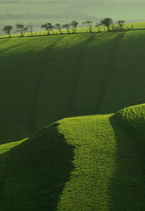 Of green pastures and trees. Take me here.