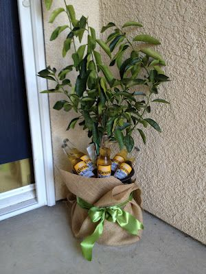Great idea.....Housewarming gift: Lime Tree & Coronas!