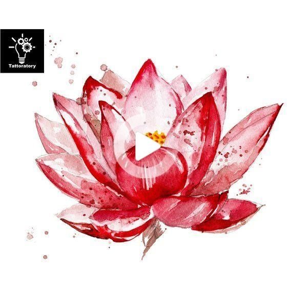 Lotus Lotus Lotus Tattoo Temporaire Faux Tatouage Tattoo Tattoo
