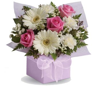 Sweet Thoughts for flower delivery New Zealand wide