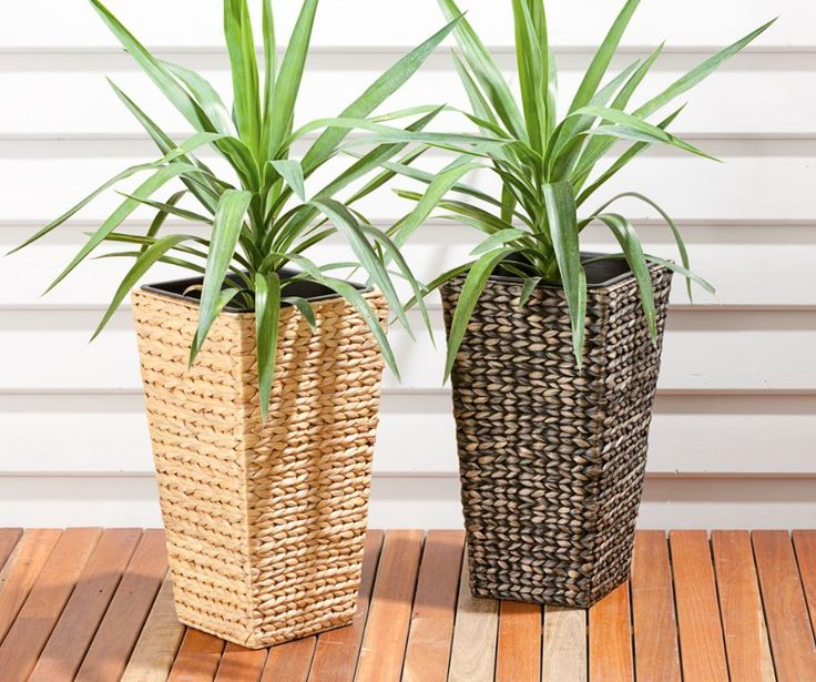 Reject Shop Outdoor Solar Lights: 22 Best Images About Savvy Gardens On Pinterest
