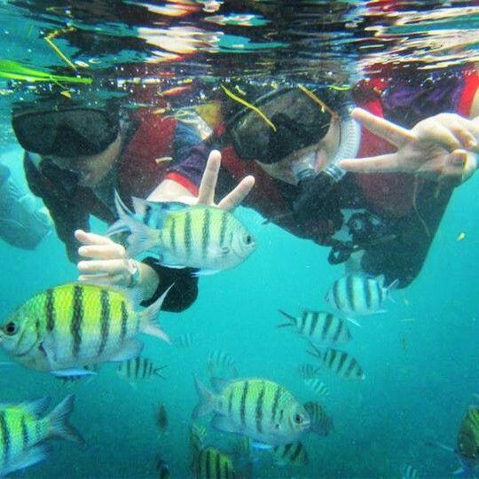 Snorkeling at Tanjung Benoa, Bali, INDONESIA