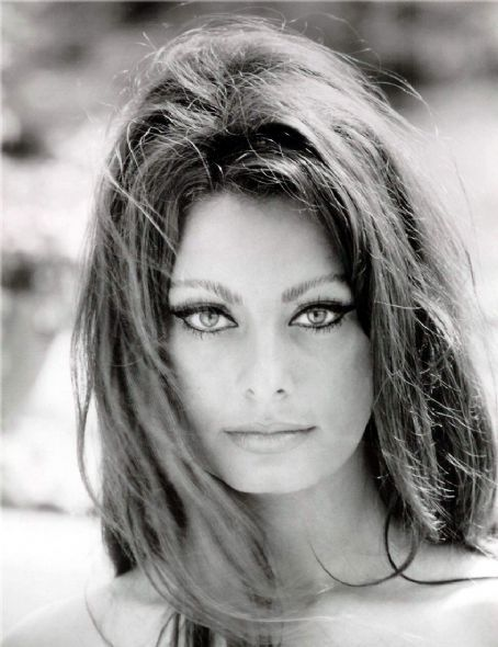 Vintage Sophia Loren | ... 2011 305 hollyhocksandtulips vintage actress beauty eyes sophia loren