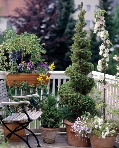 apartment patio decorating ideas for spring | for easy maintenance mix water saver in the soil for spring florals to ...