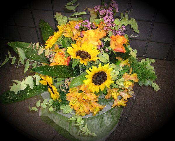 1000 idee su fiori autunnali su pinterest fiori per