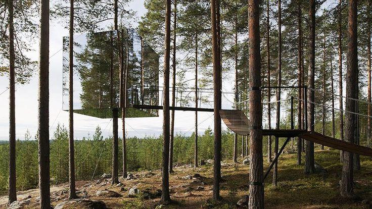 Treehouse Hotel Tourism, Sweden - Next Trip Tourism