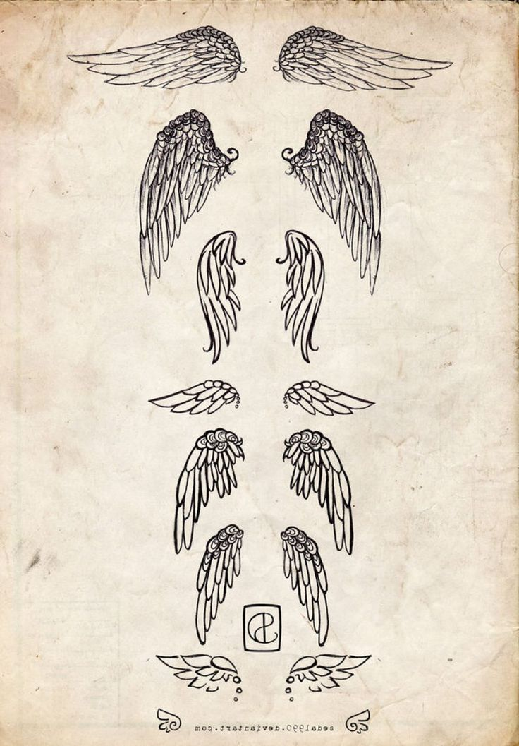 Small Angel Wings Tattoo photo, Small Angel Wings Tattoo image, Small Angel Wings Tattoo gallery