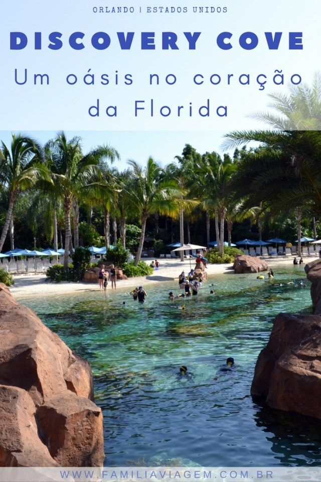Orlando - Florida- Estados Unidos : O Discovery Cove é um parque aquático que tem como proposta ser um oásis para relaxar e curtir a interação com os animais. O parque é uma atração imperdível e funciona no sistema all inclusive. É um passeio inesquecível para toda a família em Orlando