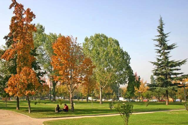 Hermosas áreas verdes