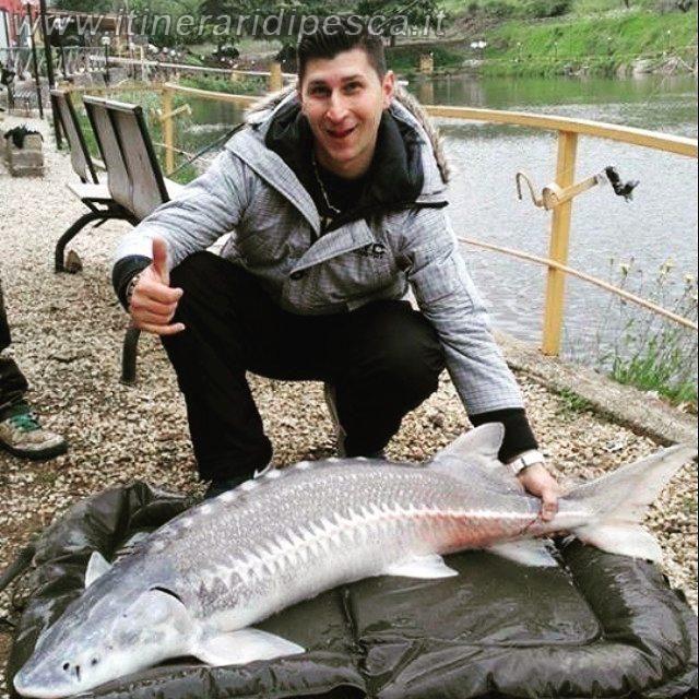 Lago le Mole Vecchie - Dove pescare storioni giganti a Roma pesca fishing