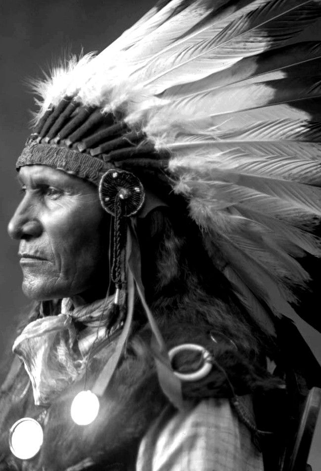 Studio profile of Louie, Sitting Bull's son. Hunkpapa Sioux, wearing a war bonnet. Photograph by D. F. Barry, 188?. The pronunciation of Hunkpapa is something like: Hunk - par - per.