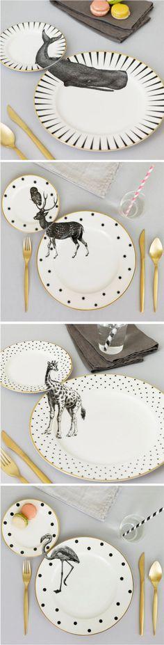 Vaisselle assiettes animal printing / vajilla platos animales