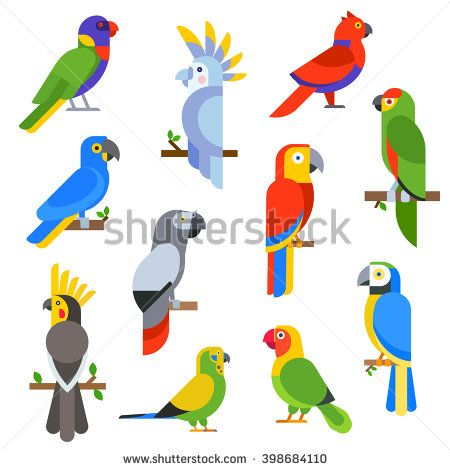 Cartoon parrots set and parrots wild animal birds. Tropical parrots feather zoo…