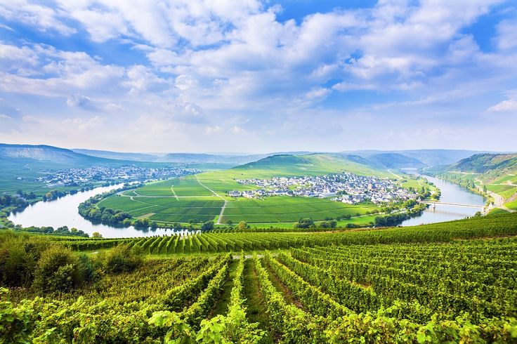LONELY PLANET Wending between vertiginous vine-covered slopes, the Moselle (in German, Mosel) is narrower than its neighbour, the Rhine, and has a more intimate...