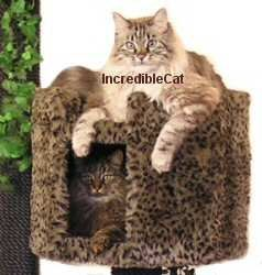 Only $627! 4 FT BOULDER CAT CONDO with 2 eight-sided beds and a Bungalow (First 4 photos only)    FUR SELECTIONS: include racoon fur
