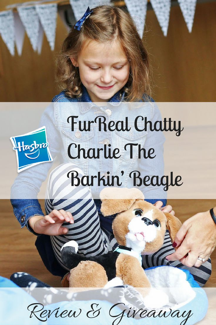 Hasbro FurReal Chatty Charlie The Barkin' Beagle Review & Giveaway http://www.amomentwithfranca.com/hasbro-furreal-chatty-charlie-the-barkin-beagle-review