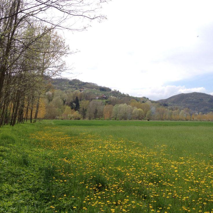 Primavera nella langa