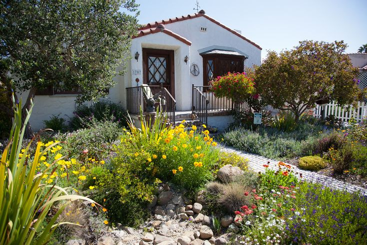 Landscaping Ideas Northern California : Ca california native landscape backyard plants garden ideas