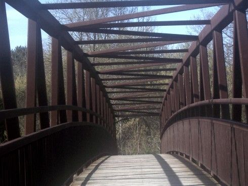 on a nature walk and went over this bridge crossing the credit river