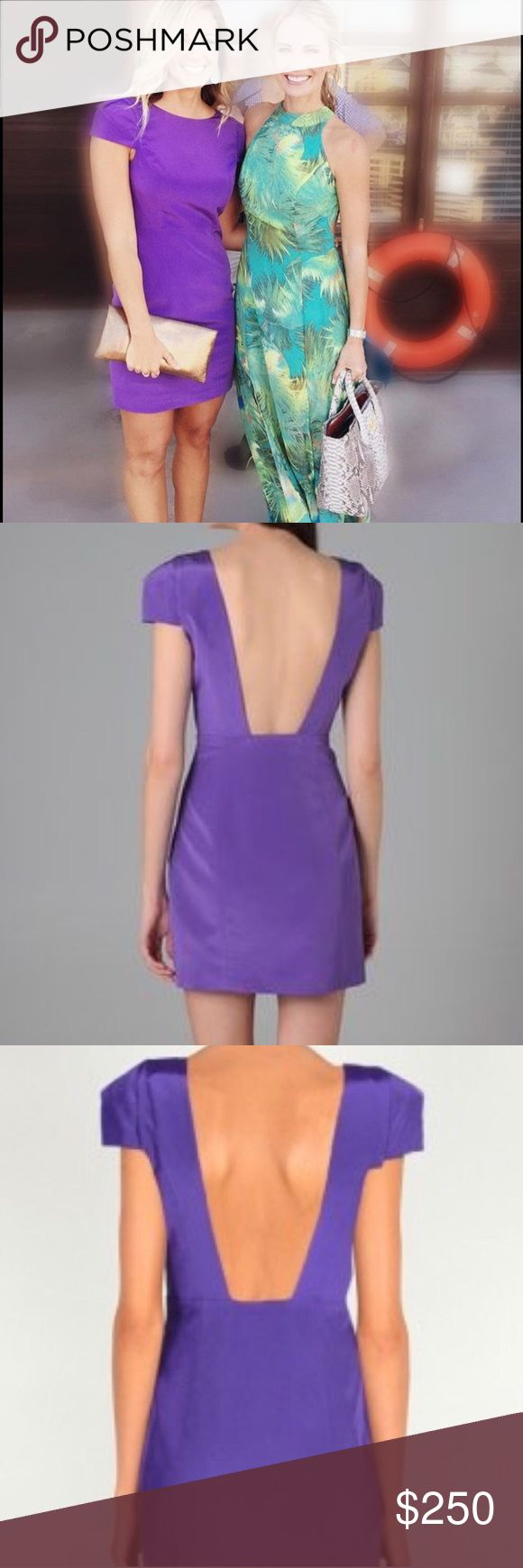 Southern Charm Tibi Dress Just gorgeous!! Silk Tibi dress. It is a purple color with a hidden zipper going down the side. The back is a drop style. The sleeves are capped, and are lightly padded. Perfect condition! worn once! As seen on the gorgeous Chelsea from Bravo tv's hit show Southern Charm!!! She wore it to Sheps Bday party on the boat!! Tibi Dresses