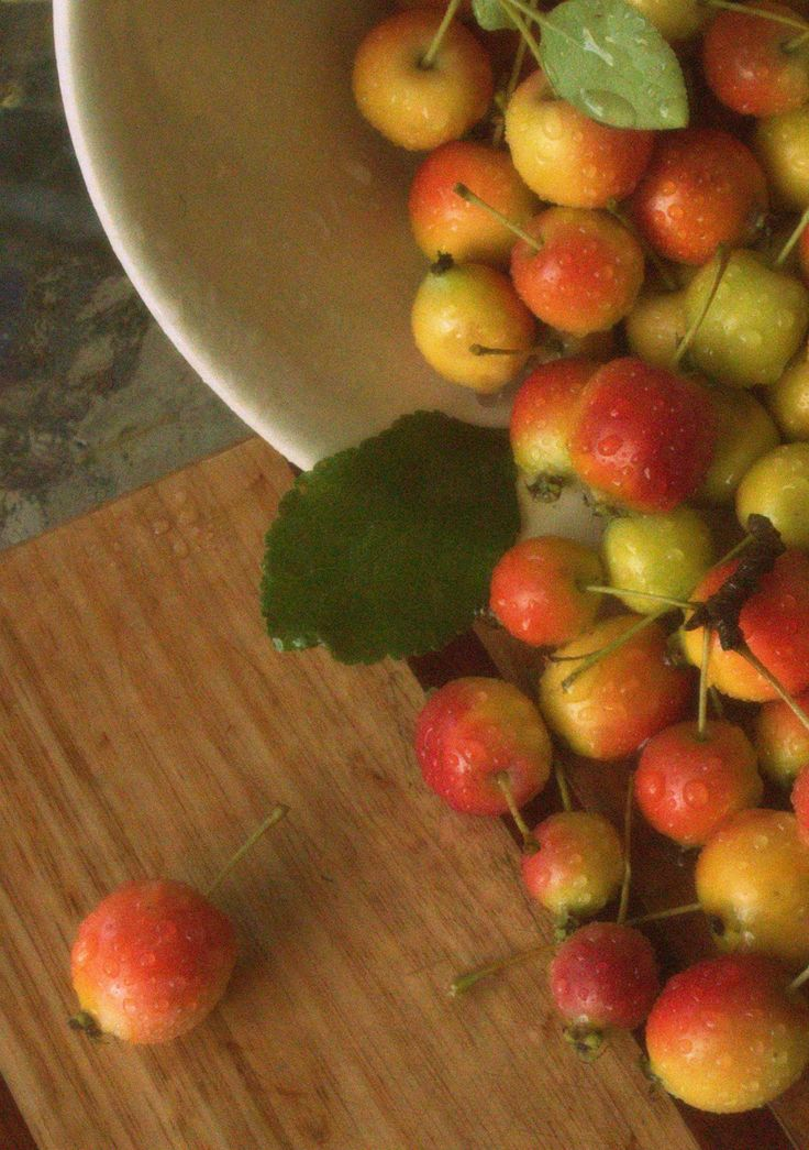 One of my photographs of Crab-apples freshly harvested and ready to be cooked up into Mum's Crab-apple Jelly. Image Copyright to Lisa Pownall 2014 for Riverwind Design & RouxBarb Home