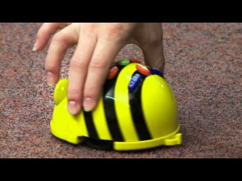 Bee-Bot: a class introduction