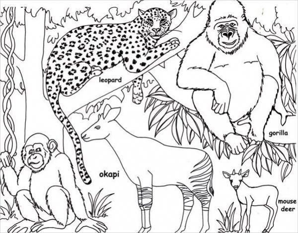 4351cc8a578e92471a40aa9d977824b1 » Jungle Scene Coloring Pages