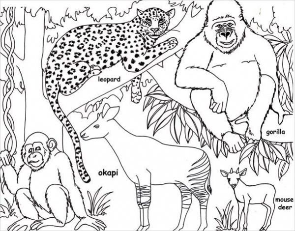Jungle Coloring Pages Best Coloring Pages For Kids Jungle Coloring Pages Animal Templates Giraffe Coloring Pages