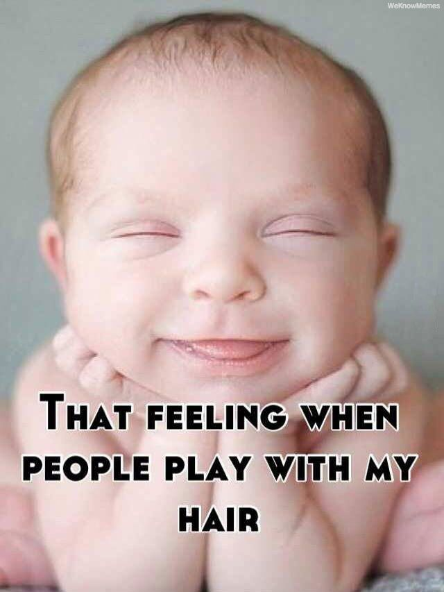 Funny Memes For Hairstylists : Best hair memes images on pinterest curly