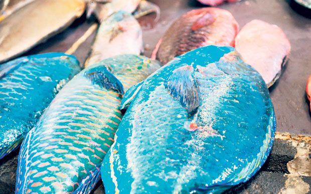 Shelina Permalloo, the winner of MasterChef 2012, reveals her favourite restaurants on the island of Mauritius