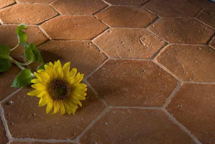Photo of hexagonal terracotta tiled floor | Dryland