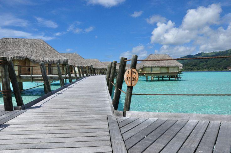 Le rêve polynésien   Lune de miel insolite en Polynésie  #Polynesie #Polynesia #Luxe #Tahaa #Island #TahaaIslandResortandspa #RelaisetChateaux #honeymoon #Lagoon #Blue #Snorkeling #Love