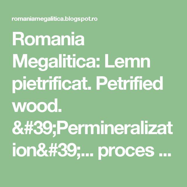 Romania Megalitica: Lemn pietrificat. Petrified wood. 'Permineralization'... proces de fosilizare!?! O enigma mondiala! Nu va luati dupa ce spun... 'savantii'! Ori... Wikipedia. Romania in TOP!  Muzeul de lemn pietrificat de la Gărâna,județul Caraș-Severin