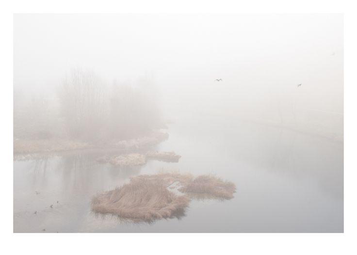 #Río Pisuerga a su paso por #CabezóndePisuerga. © Ricardo Gutiérrez