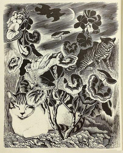 Clifford Webb (English, 1895-1972). Cats. (wood engraving)