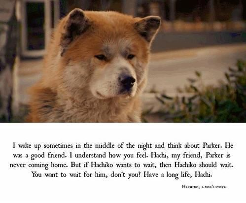 Lasse Hallström -Hachiko- A Dog's Story (2009)-Japan / This was a true story!  God Bless Hachi!  (: