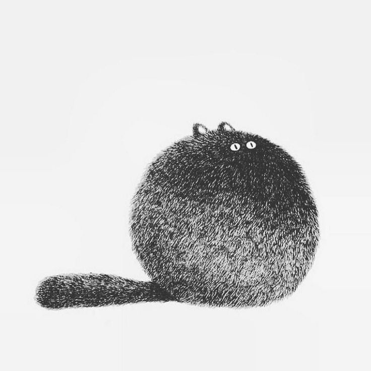 Wouldn't this adorable little round kitty make the cutest cat tattoo? Love it!  // cat art we LOVE by @vivikiu_ #cattattoo #catart #fatcat