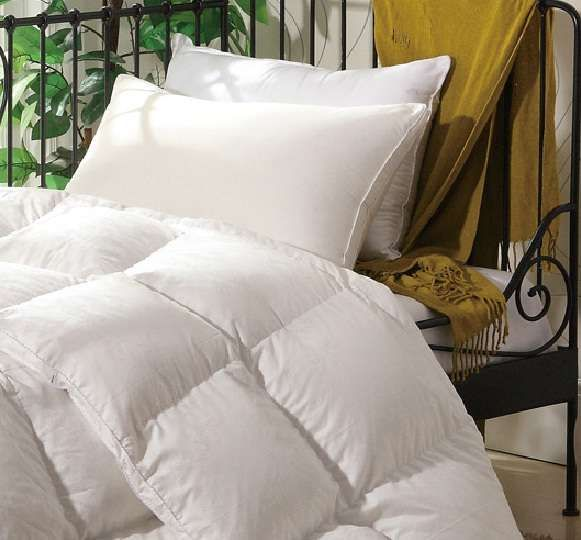 Goose Down Duvet Queen Size - White | Buy Online in South Africa | takealot.com