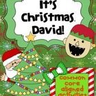 It's Christmas, David! by David Shannon is a must read this Christmas season. This 35 page packet is aligned to the common core standards and addre...