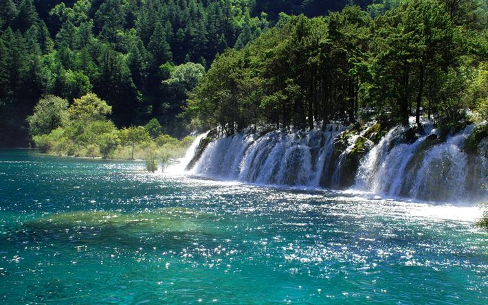 Download wallpapers Jiuzhaigou National Park, waterfall, river, forest, China, Asia