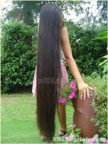 very long hair | Vietnam LH | Long hair styles, Silky hair ...