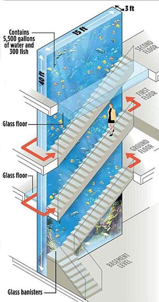 L'aquarium géant de Thierry Henry - 7SUR7.be