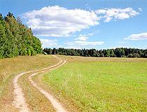 Field road in the Tver region