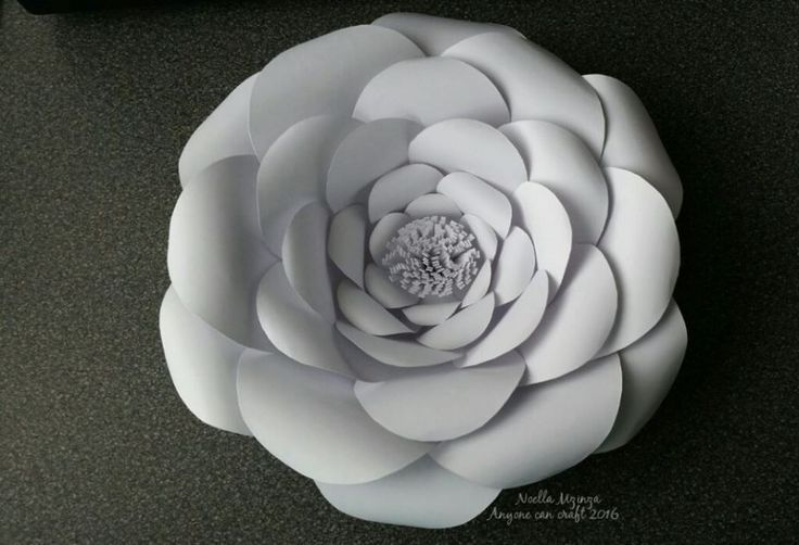 Lots of large paper flower templates for backdrops. Also a You Tube channel with instructions.