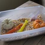 Halloween Themed Sensory Tub   No Time For Flash Cards - Play and Learning Activities For Babies, Toddlers and Kids: Preschool Activities, Toddlers Activities, Frugal Sensory, Sensory Tubs, Sensory Idea, Fall Crafts, Fall Harvest, Simple Sensory, Fall Sensory Bins