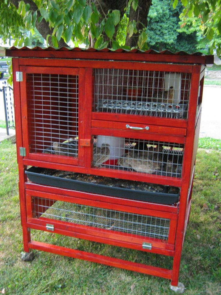 Quail Coop Competition! Show off your hard work.... | Page ...